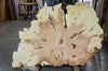 Maple Burl 050119-07