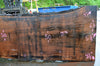 Oregon Black Walnut Slab 050417-10