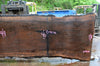 Oregon Black Walnut Slab 050417-13