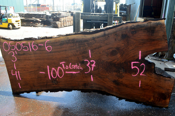Oregon Black Walnut Slab 050516-06