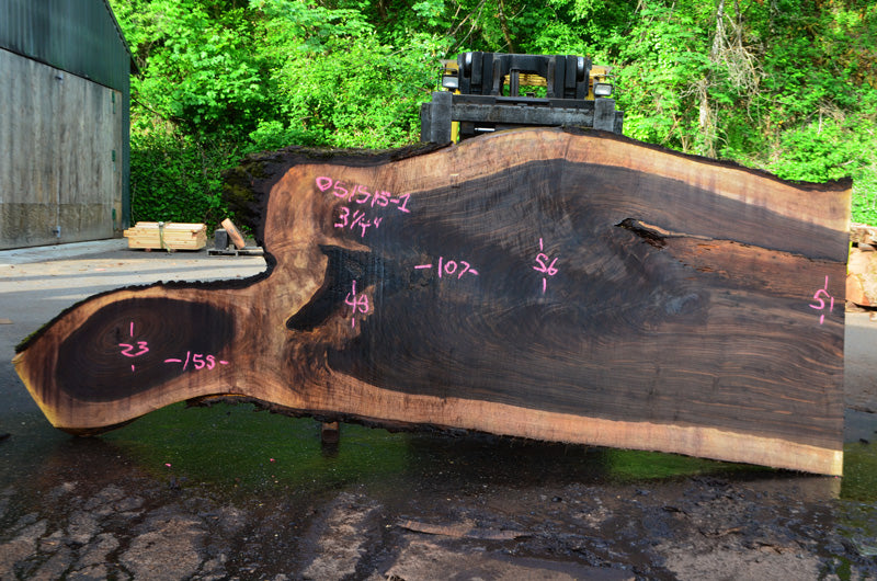 Oregon Black Walnut Slab 051515-01