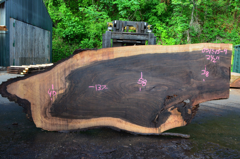 Oregon Black Walnut Slab 051515-04