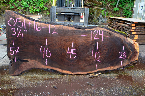 Oregon Black Walnut Slab 051716-12