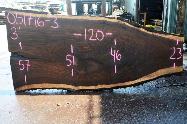 Oregon Black Walnut Slab 051716-03