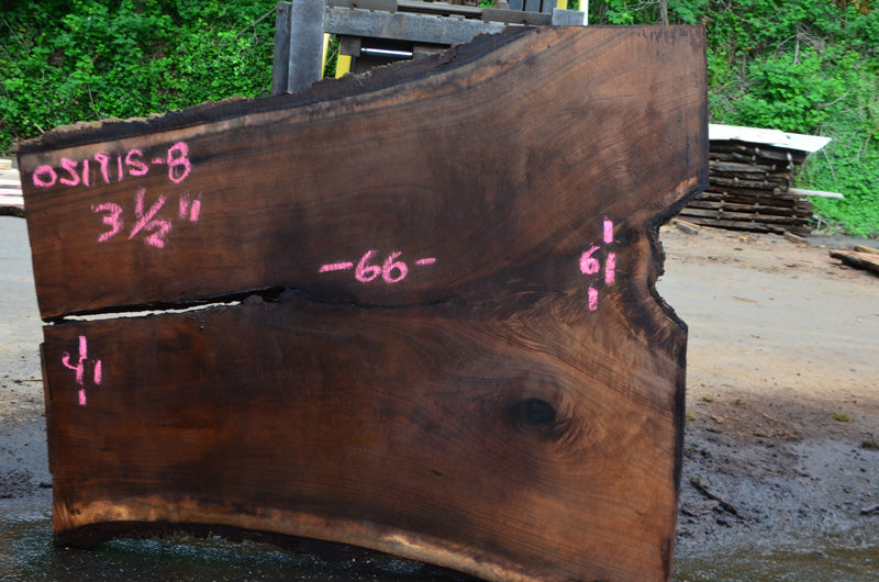 Oregon Black Walnut Slab 051915-08