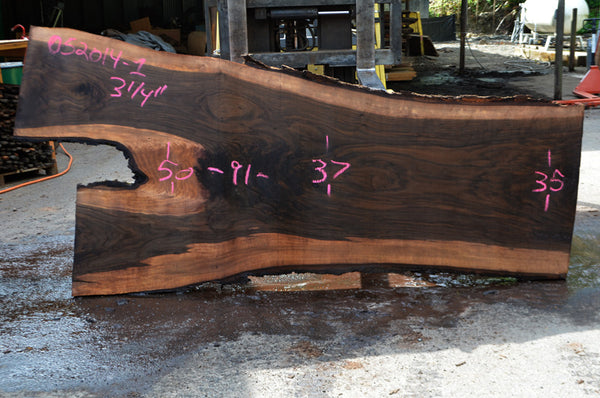 Bastogne Walnut Slab 052014-01