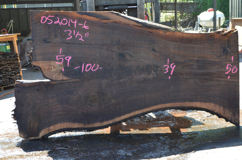 Bastogne Walnut Slab 052014-06