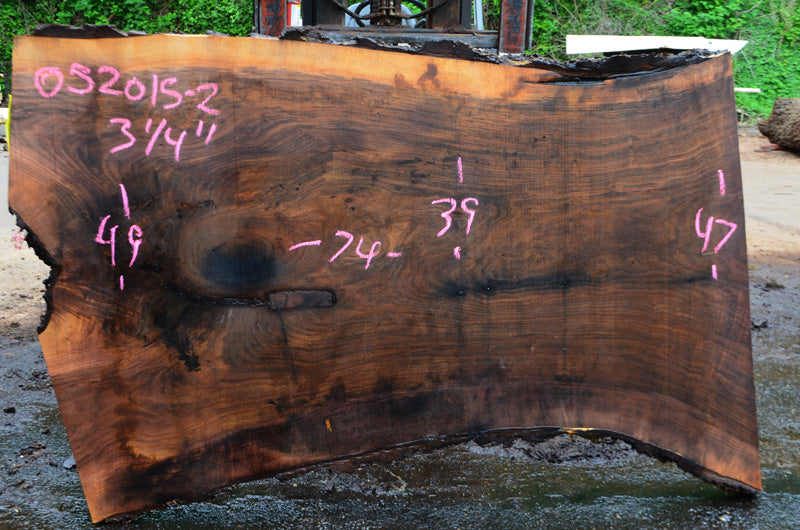 Oregon Black Walnut Slab 052015-02