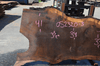 Oregon Black Walnut Slab 052320-03
