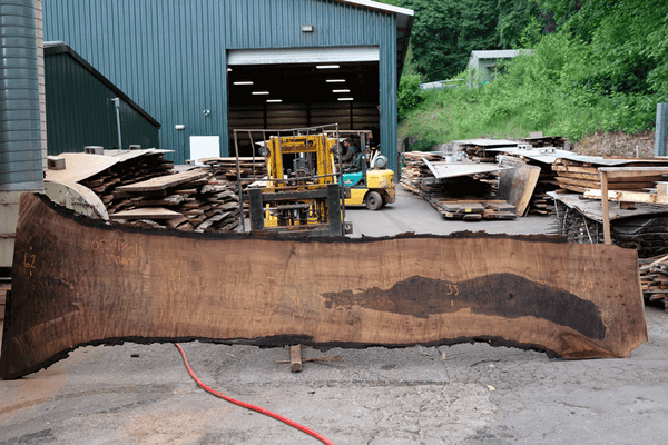 Oregon Black Walnut Slab 052418-01