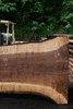 Oregon Black Walnut Slab 052418-10