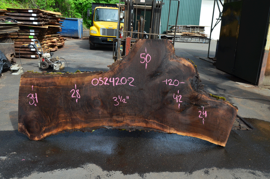 Oregon Black Walnut Slab 052420-02