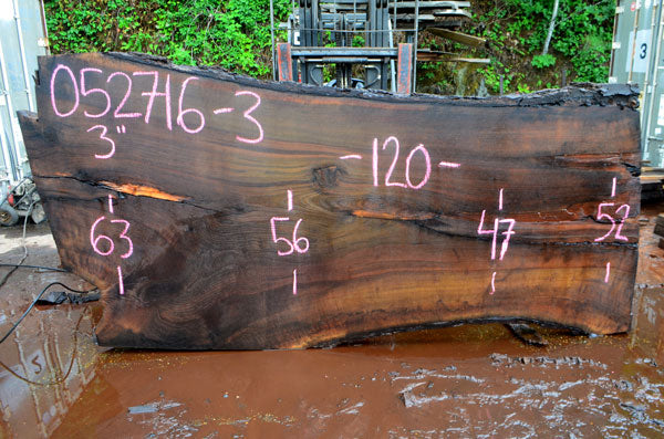 Oregon Black Walnut Slab 052716-03