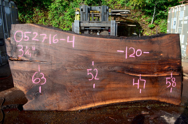 Oregon Black Walnut Slab 052716-04