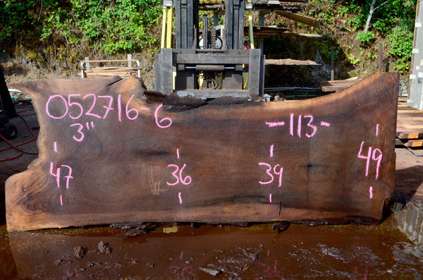 Oregon Black Walnut Slab 052716-06