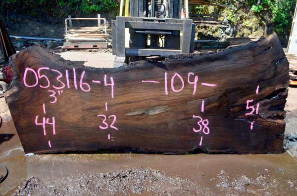 Oregon Black Walnut Slab 053116-04