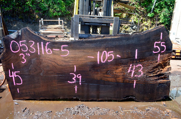 Oregon Black Walnut Slab 053116-05