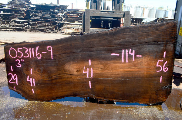 Oregon Black Walnut Slab 053116-09