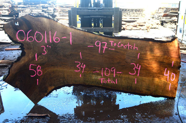 Oregon Black Walnut Slab 060116-01