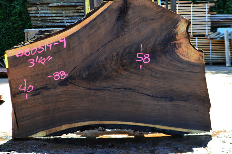 Oregon Black Walnut Slab 060514-4