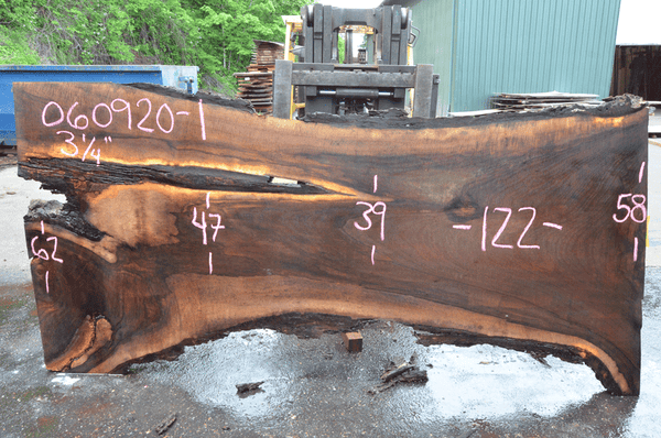 Oregon Black Walnut Slab 060920-01