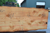 Oregon Fir Slab 061220-03