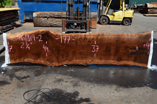 061319-02 Oregon Black Walnut Slab