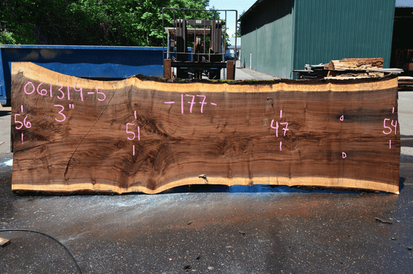 061319-05 Oregon Black Walnut Slab