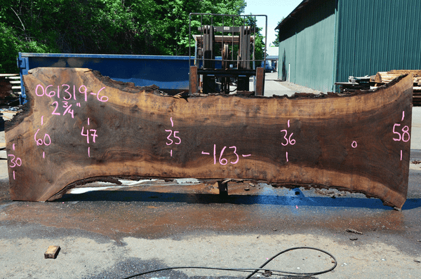 061319-06 Oregon Black Walnut Slab