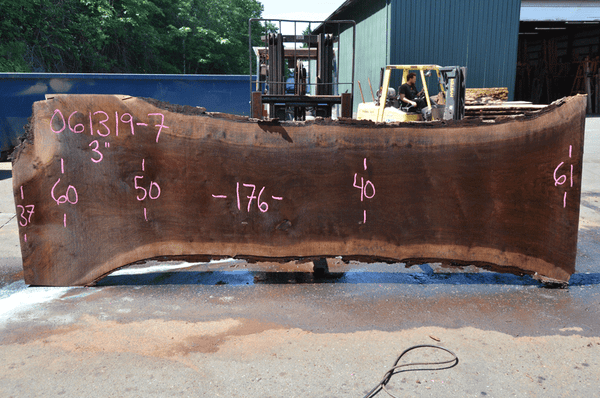 061319-07 Oregon Black Walnut Slab