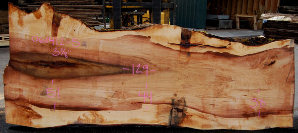 Big Leaf Maple Slab 061412-05
