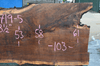 061719-05 Oregon Black Walnut Slab