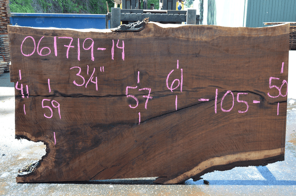 061719-14 Oregon Black Walnut Slab