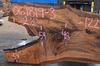 061819-03 Oregon Black Walnut Slab