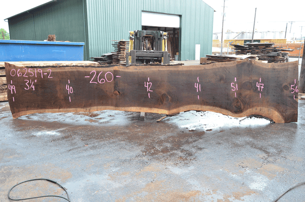 062519-02 Oregon Black Walnut Slab