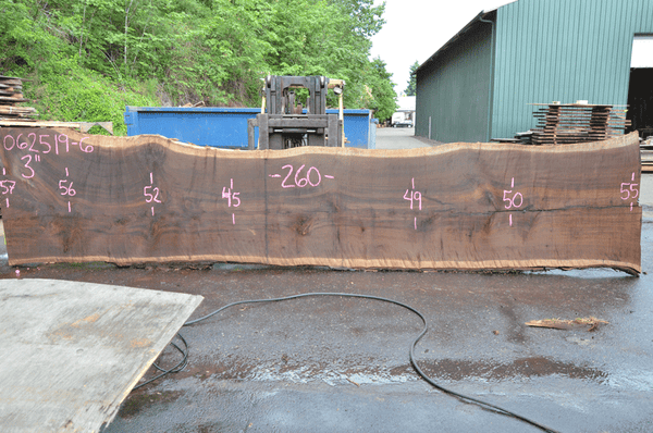 062519-06 Oregon Black Walnut Slab
