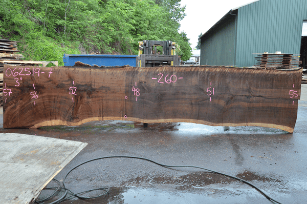 062519-07 Oregon Black Walnut Slab