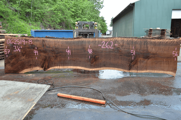 062519-08 Oregon Black Walnut Slab