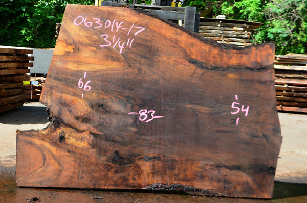 Oregon Black Walnut Slab 063014-17