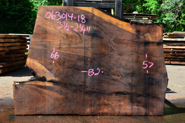 Oregon Black Walnut Slab 063014-18
