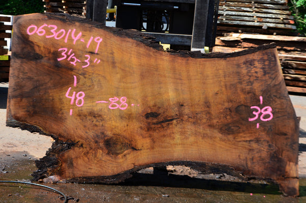 Oregon Black Walnut Slab 063014-19