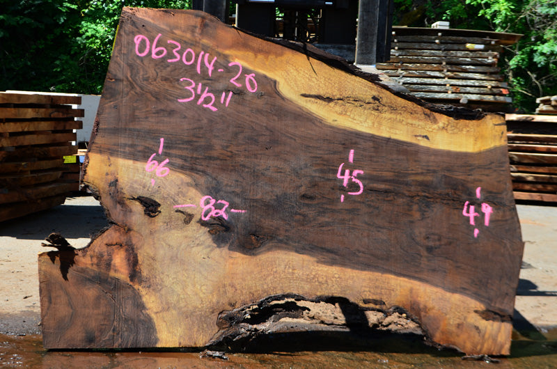 Oregon Black Walnut Slab 063014-20