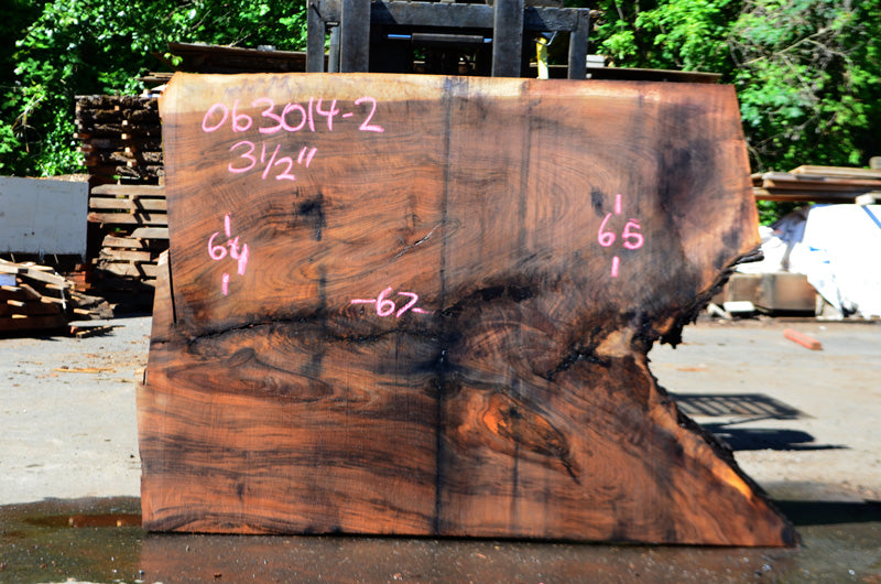 Oregon Black Walnut Slab 063014-02