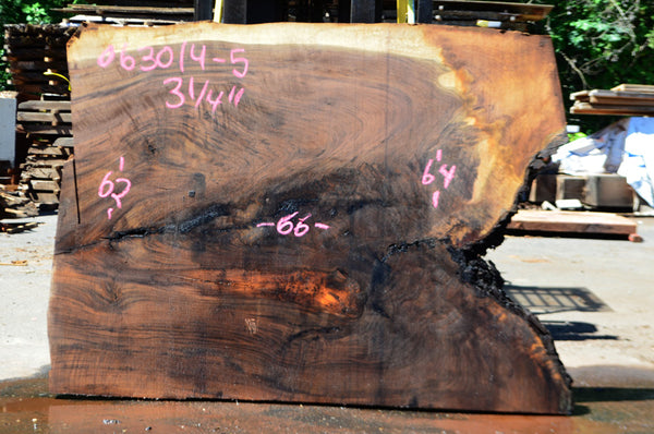 Oregon Black Walnut Slab 063014-05