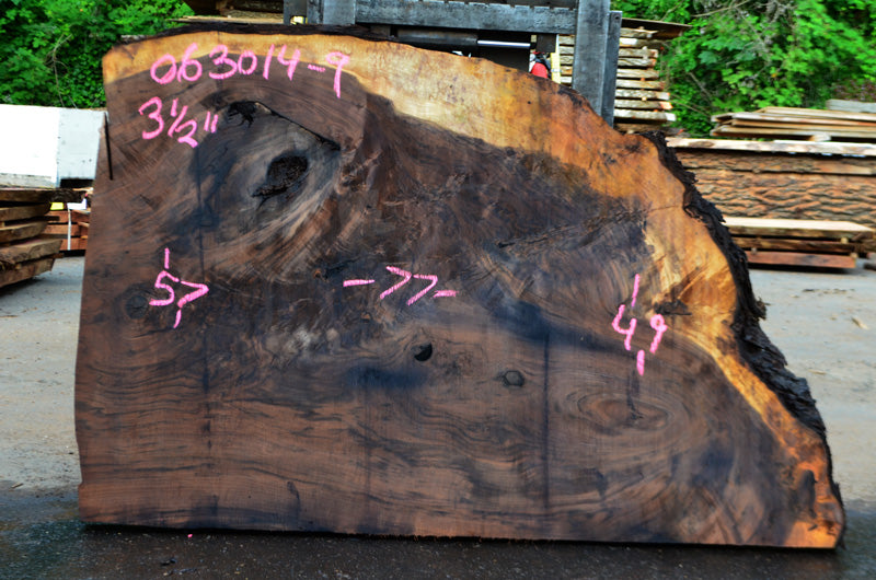 Oregon Black Walnut Slab 063014-09