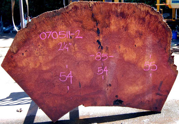 Redwood Burl Slab 070511-2