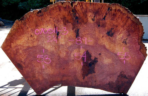 Redwood Burl Slab 070511-3