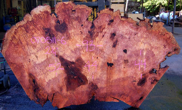 Redwood Burl Slab 070511-6