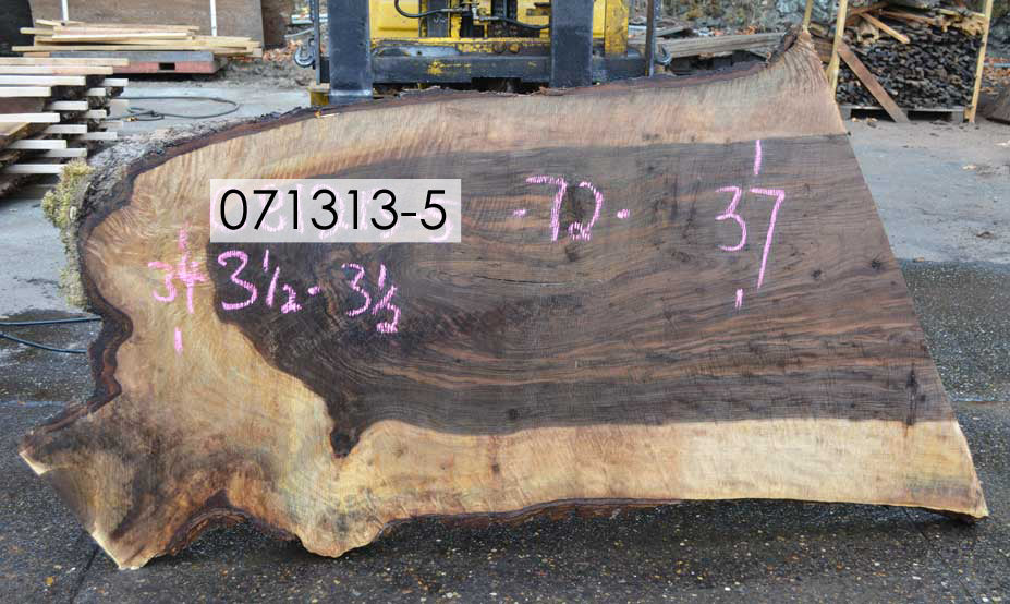 Bastogne Walnut Slab 071313-05