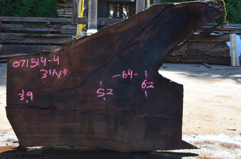 Oregon Black Walnut Slab 071514-04